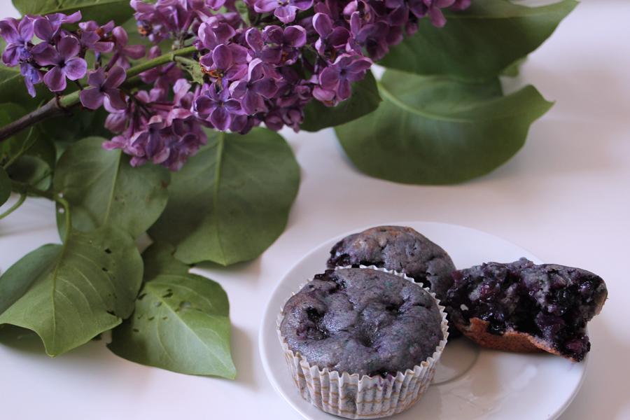 Bluberry Muffins 3
