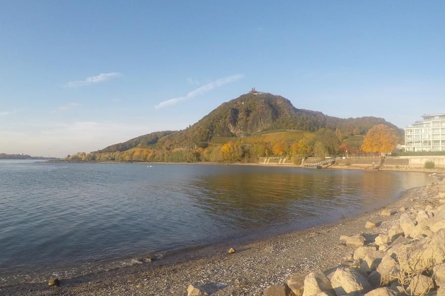 Blick vom Rheinufer auf den Drachenfels
