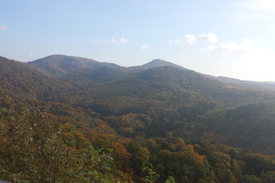 Das Siebengebirge im Herbst, Ausblick während des Aufstiegs auf den Drachenfels.