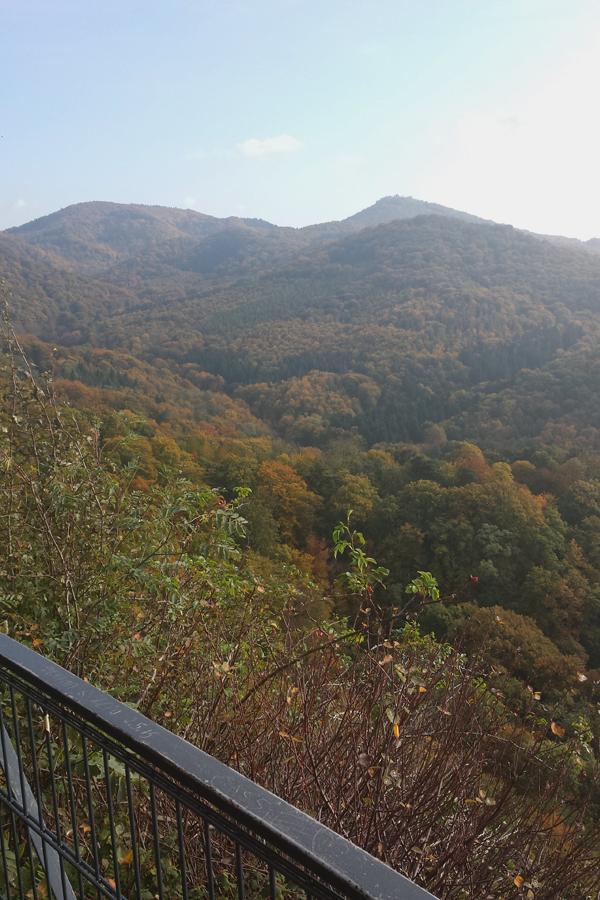 Das Siebengebirge im Herbst.