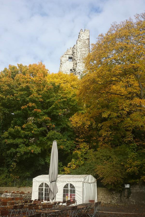 Ruine auf dem Drachenfels im Herbst.