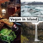 Vegan in Island