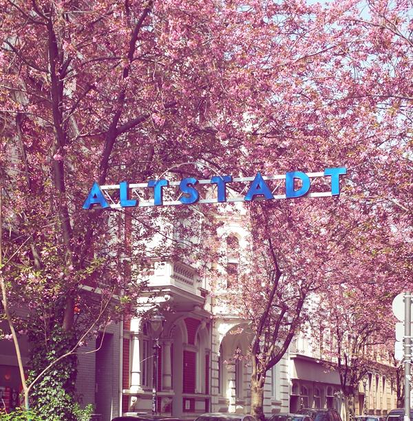Bonner Altstadt im Frühling