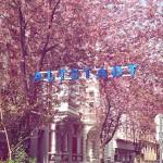Ausflugsziele im Frühling in Bonn und Umgebung