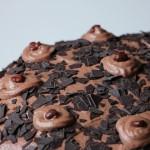 Rezept: Schoko-Sahne Torte