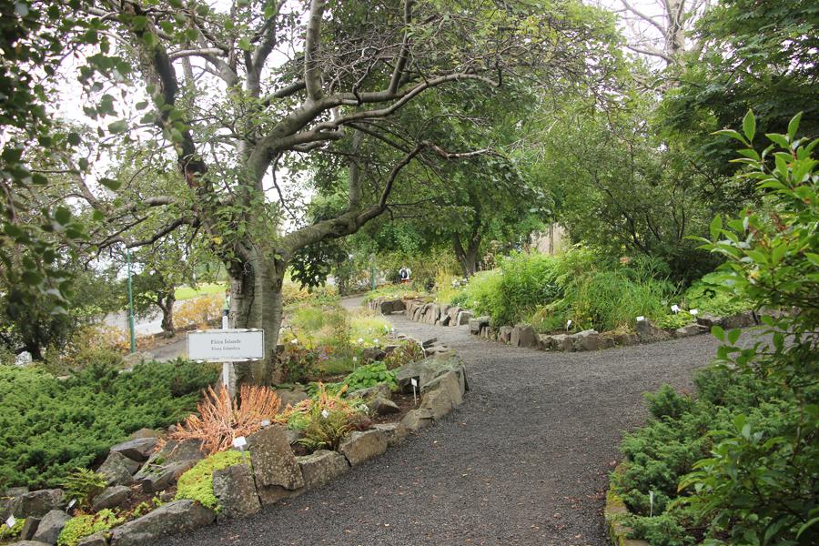 Akureyri botanischer Garten Island