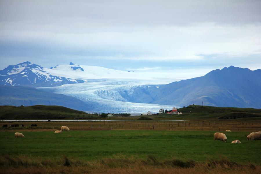 Blick auf eine Gletscherzunge