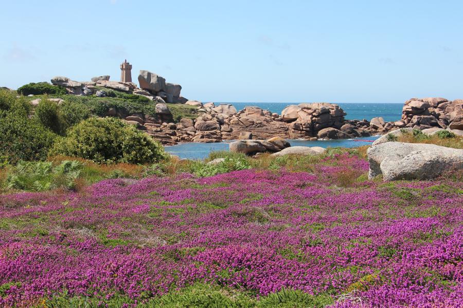 Wandern an der Côte de Granit Rose