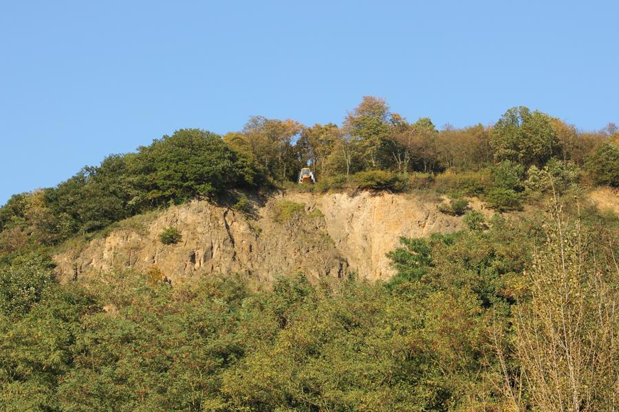 Ausflugsziele Im Herbst In Bonn Und Umgebung