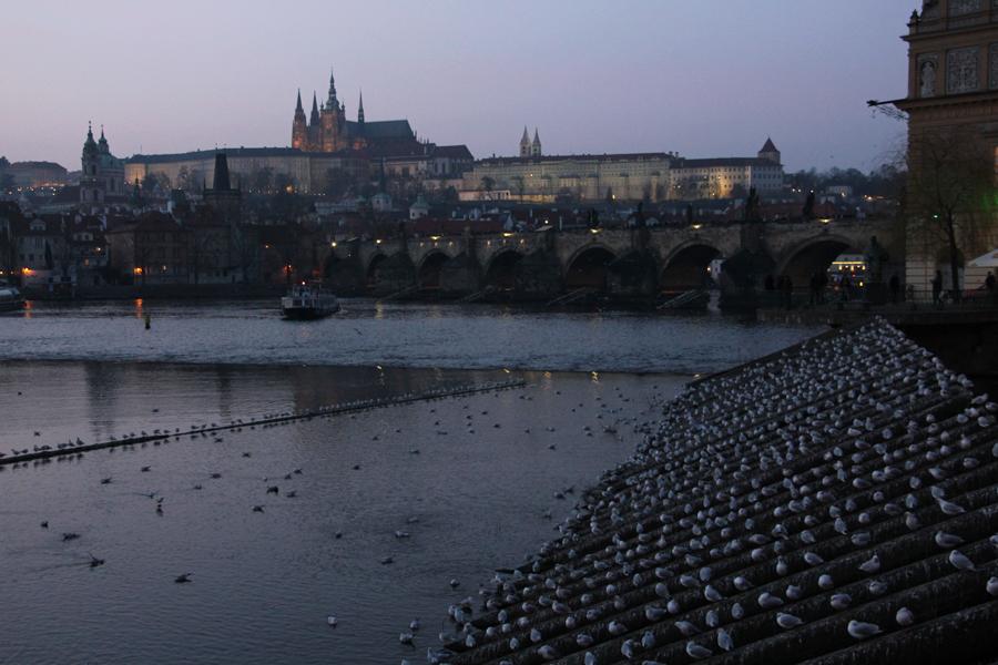 Ein Wochenende in Prag im Advent, Karlbrücke in der Abenddämmerung