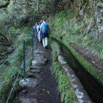 Wandern auf Madeira – 3 Levada Touren für Anfänger