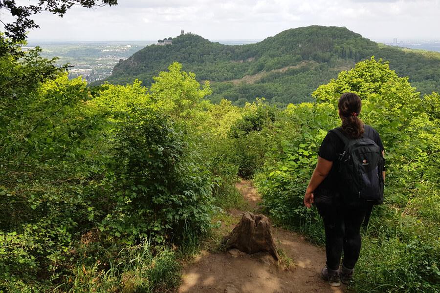 Aussicht auf Drachenfels und Wolkenburg vom Großen Breiberg.