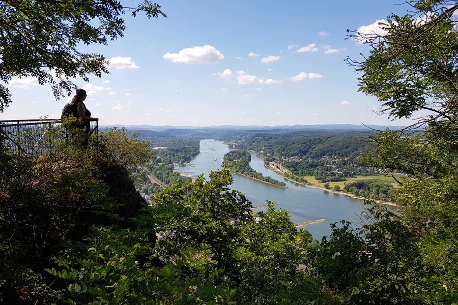 Aussicht auf den Rhein, auf dem Weg zum Dranchefels.
