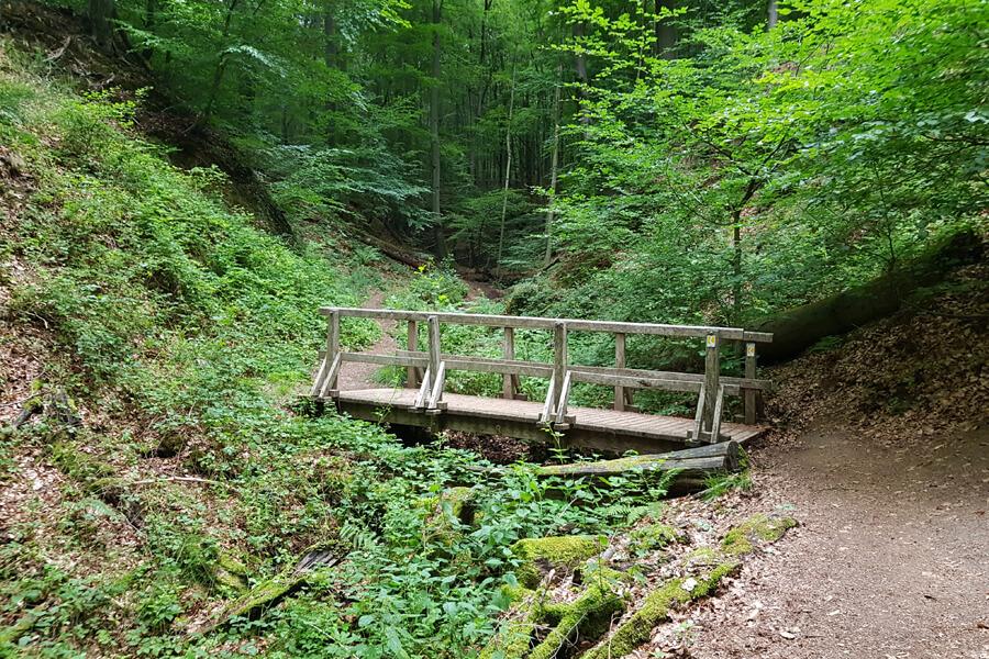 Wandern im Tretschbachtal.