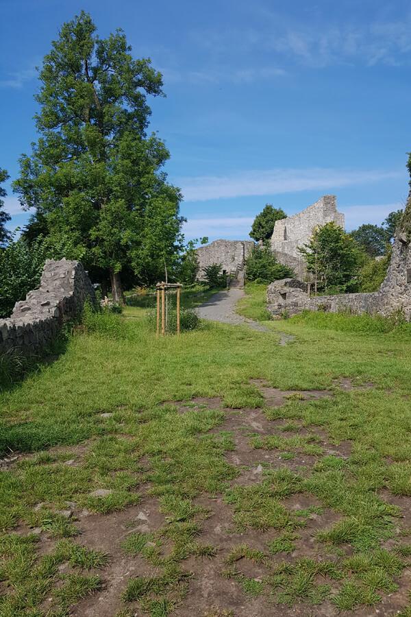 Die Burgruine auf der Löwenburg