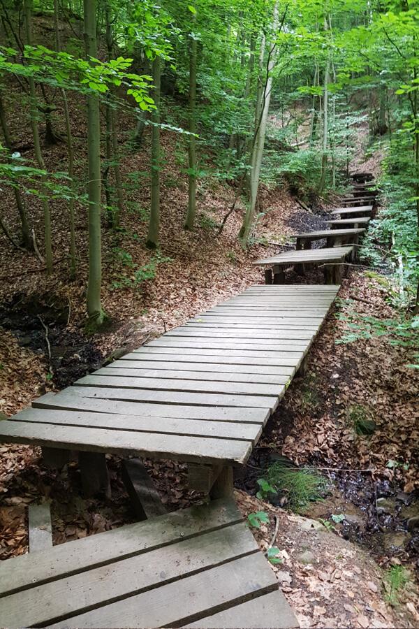 Weg über Holzplanen im Tretschbachtal.