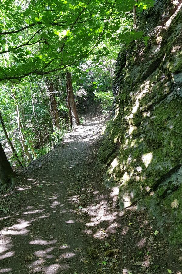 Weg auf den Drachenfels