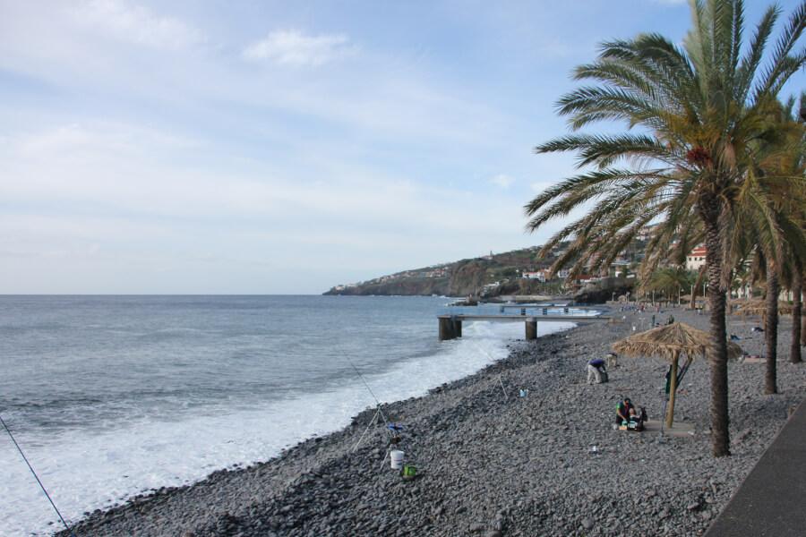 Kiesstrand mit Palmen in Santa Cruz