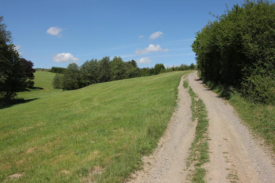 Wandern in Wipperfürth und Umgebung, auf Feldwegen über den Wipperfürther Heimatweg