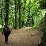 Beethoven Wanderweg: Anspruchsvolle Tagestour durch das Siebengebirge