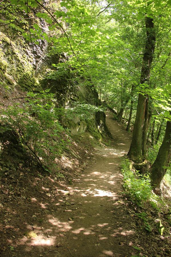 Schmaler Wanderweg unterhalb des Drachenfels