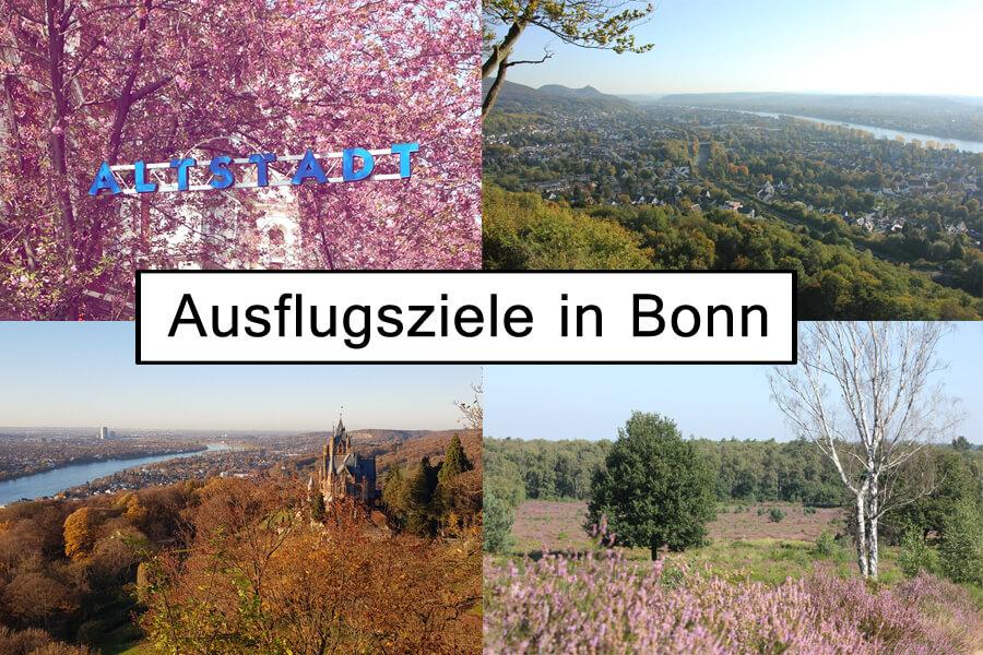 Ausflugsziele in Bonn